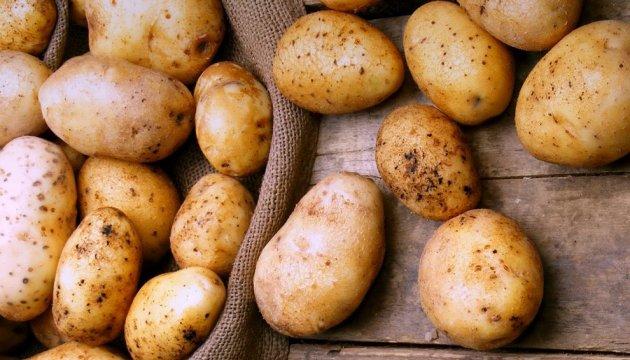 Картошка учун имтиёз