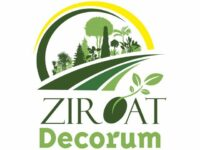Ziroat Decorum
